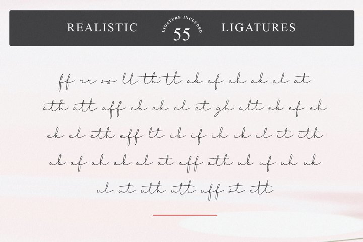 Thimberly - Free Font of The Week Design8