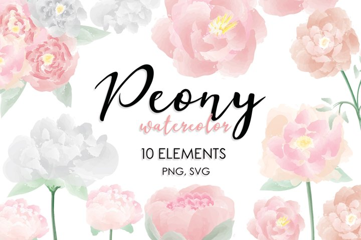 watercolor floral clipart, watercolor peony flowers svg