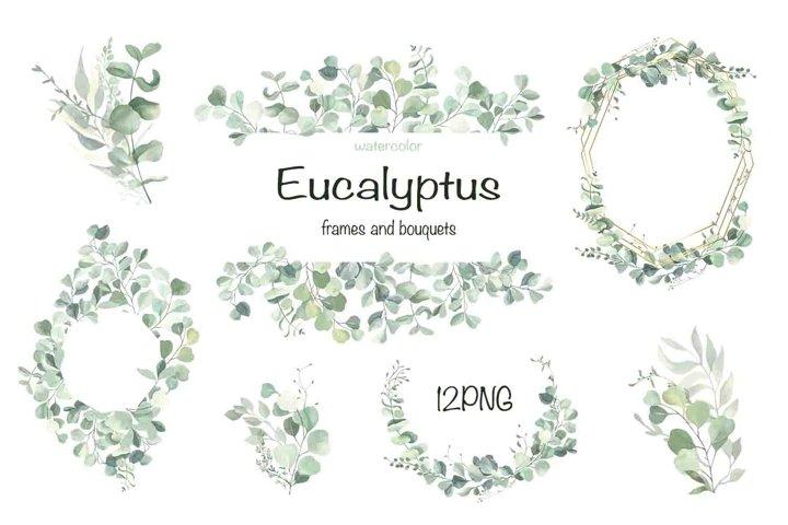 Watercolor Eucalyptus Wreath Clipart.