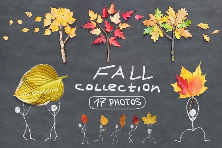 Autumn fall stock photos collection. Flat lay on chalkboard.