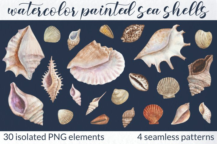 Watercolor collection of sea shells
