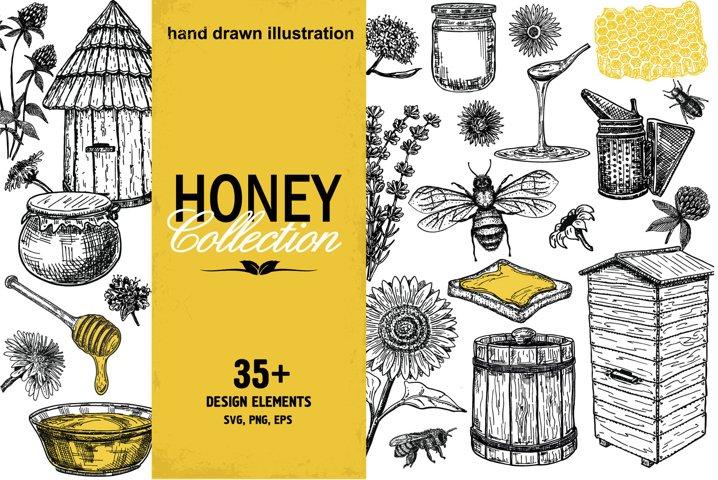 Hand drawn honey illustrations