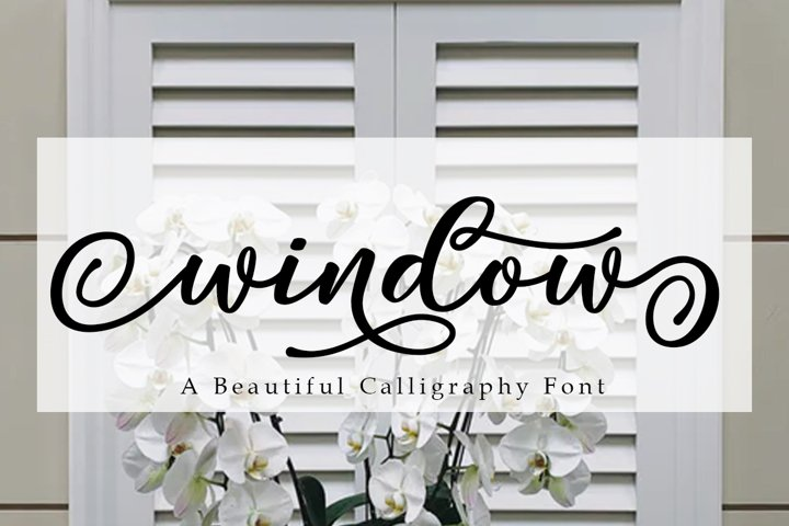 Window Script | A Calligraphy Font