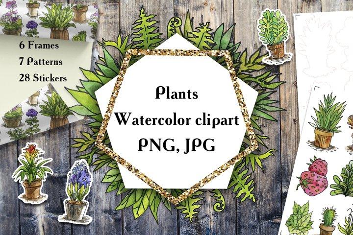 Plants Watercolor clipart PNG, JPG, EPS, SVG