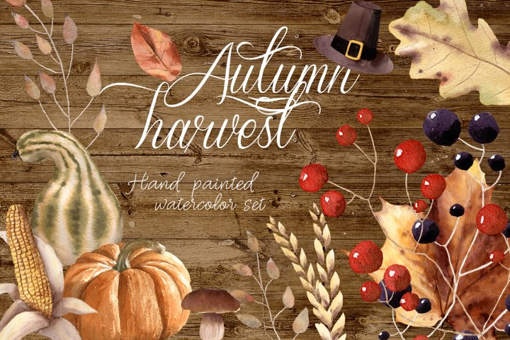 Autumn Harvest Watercolor Thanksgiving Botanical Vegetables
