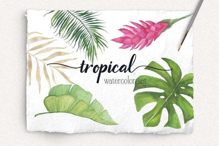 Tropical Watercolor Patterns & Clip Art