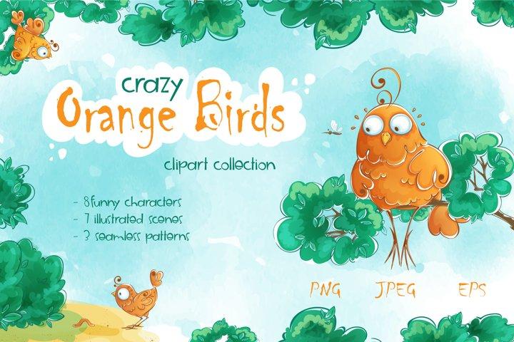 Crazy Orange Birds