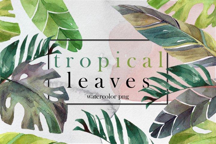 Tropical leaves watercolor