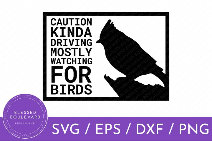 BIRD CAR DECAL CUT FILE | SVG | EPS | DXF | PNG