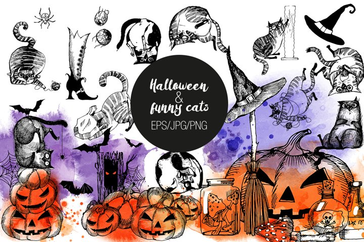 Hallowenn and funny cats