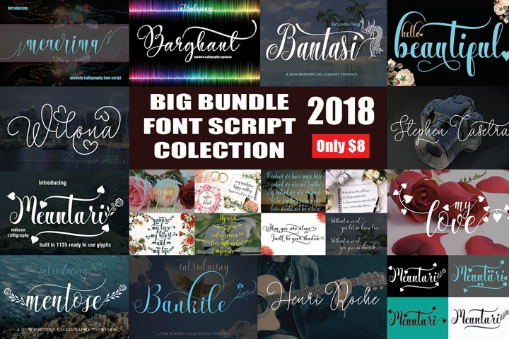 BIG BUNDLE FONT SCRIPT COLECTION