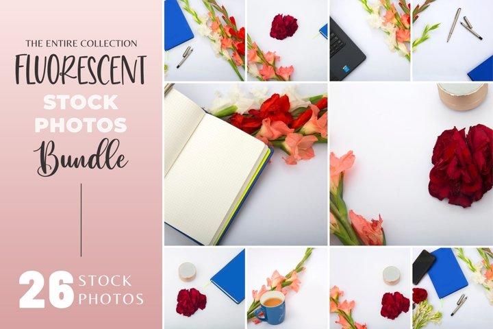 Florescent Stock Photo bundle