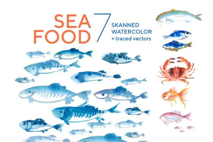 Assorted fish watercolor hand drawn illustration