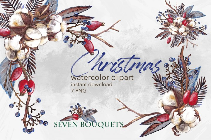 Watercolor winter bouquets. Christmas dry plants clipart PNG