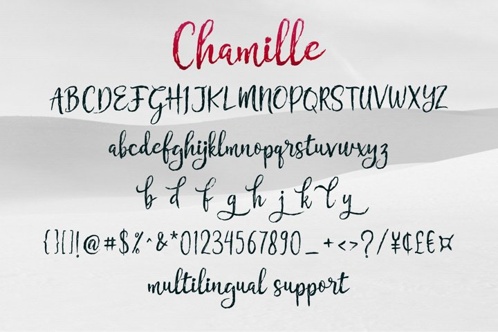 Chamille   sweet script example 8