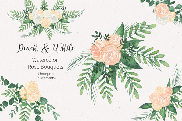 Watercolor peach, pink and white flower rose clipart