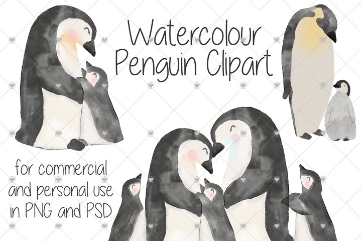 Watercolour, Baby, Penguins, Zoo, Penguin, Animals, Family,