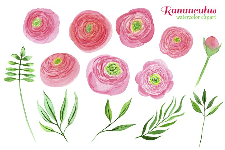 Watercolor pink ranunculus bouquets example 2