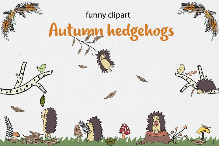 Autumn collection of hedgehogs