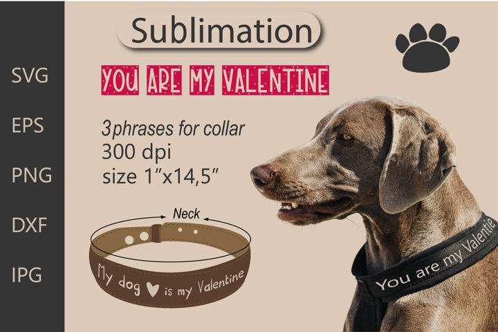 Valentines gift for a dog. Sublimation SVG Cut File