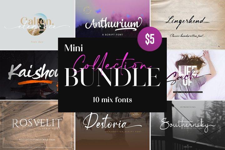 Mini Collection Bundle - 10 mix fonts