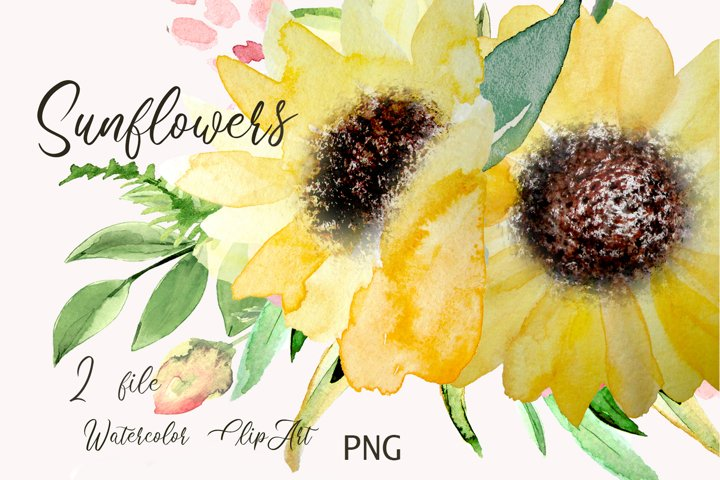Sunflowers Watercolor Clipart for Wedding floral card