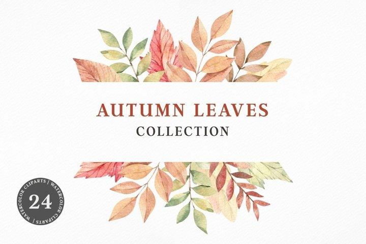 Watercolour Autumn leaves. Orange leaves