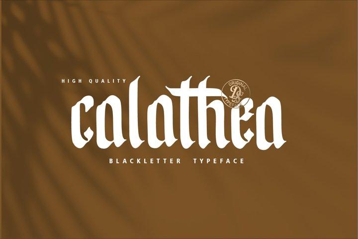 Calathea Blackletter Font