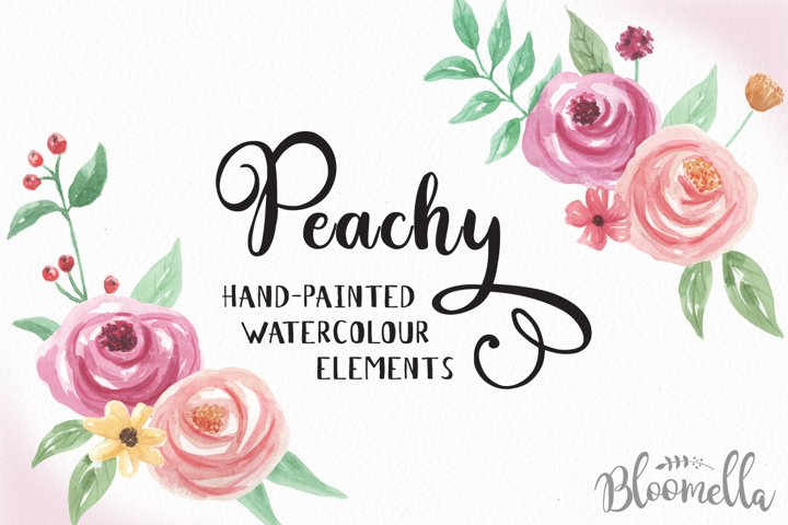 Peachy Watercolor Floral Clipart Flowers Elements 15 Pink