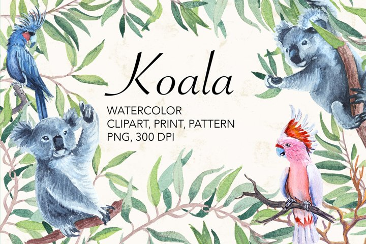 Watercolor koala, parrot, kangaroo.