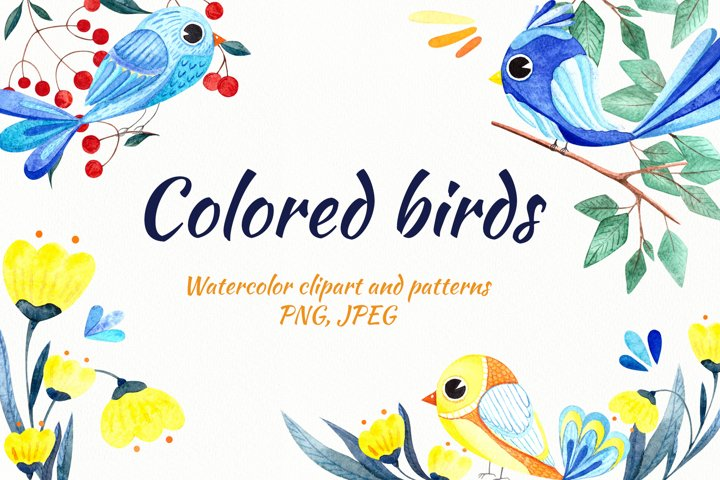 Watercolor set Colored birds