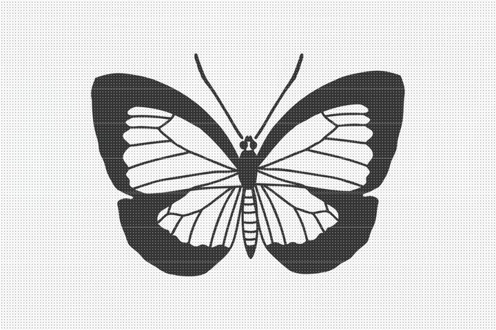 Butterfly SVG Files, SVG Cut Files