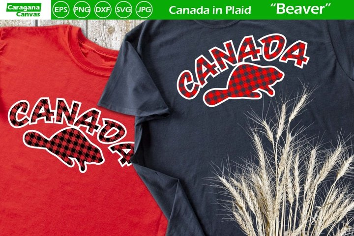 Canada in Plaid - Beaver