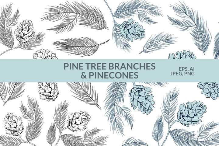 Fir tree Pinecones Handdrawn clipart. Modern line vector art