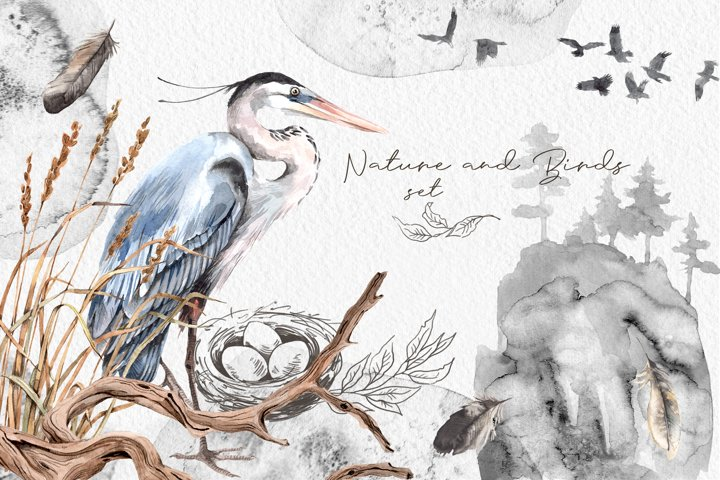 Watercolor Nature and Birds set