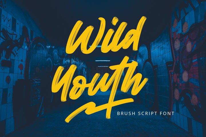 Wild Youth - Brush Script Font