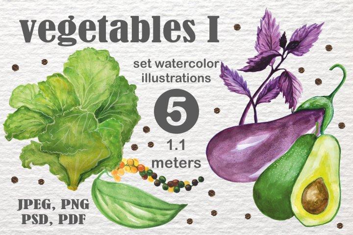 Vegetables 1.1 meters in size
