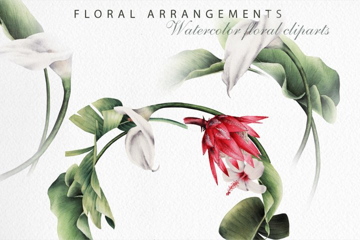 Tropical flowers, Flower arrangments
