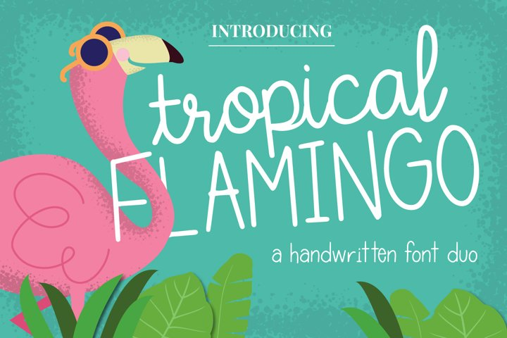Tropical Flamingo Font Duo