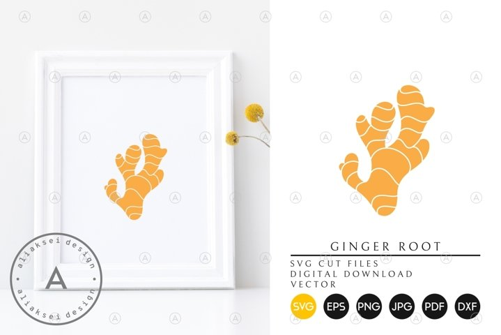 Ginger Root SVG