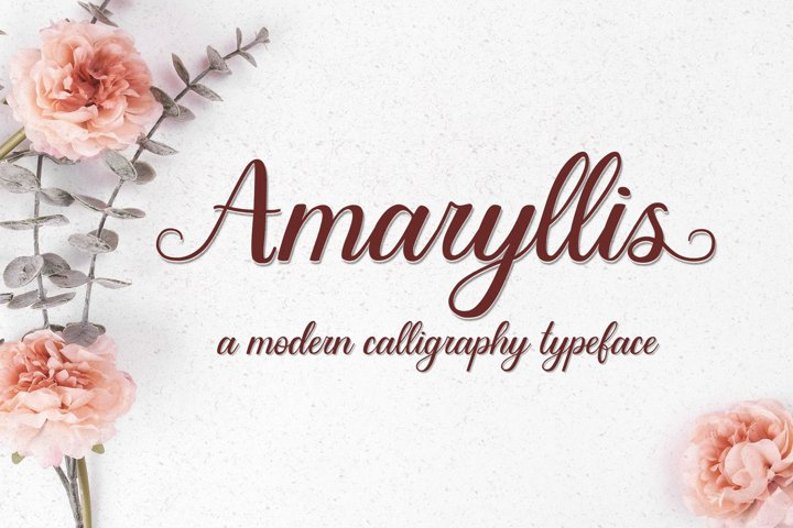 Amaryllis - a modern calligraphy typeface with swashes
