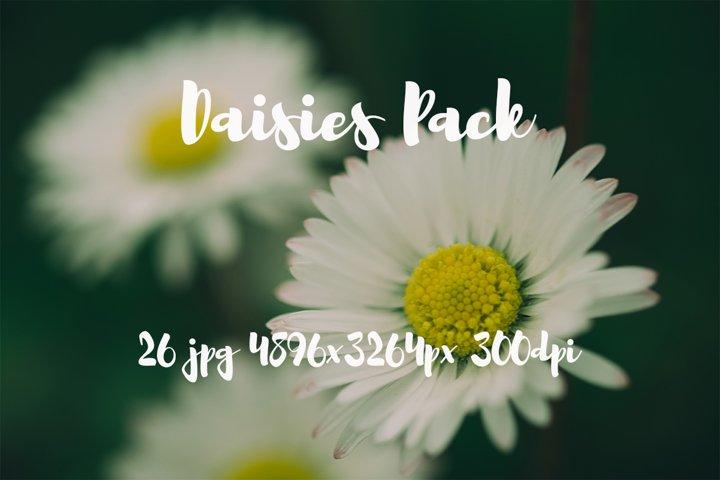 Daisies photo pack