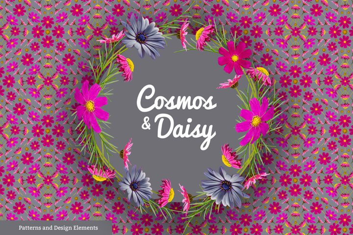 Cosmos and Daisy Floral Patterns