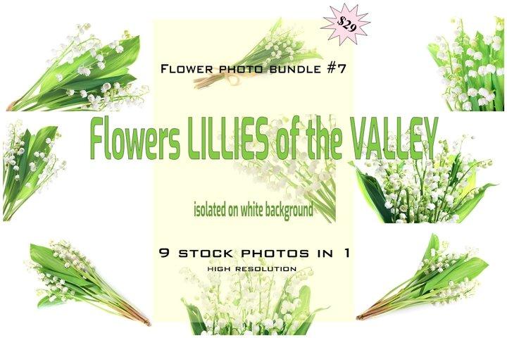 FLOWER PHOTO BUNDLE #7