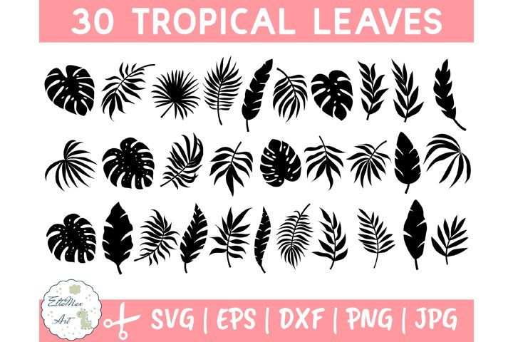 Tropical Leaves Svg Bundle, Palm Leaves Svg,Jungle leaves