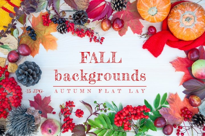 Fall Background /Autumn flat lay/ 15 JPG