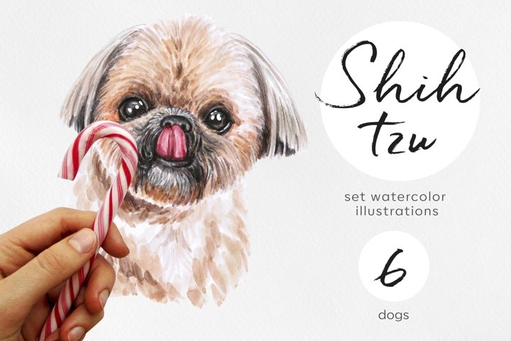 Shih Tzu. Watercolor dogs illustrations set. Cute 6 dogs