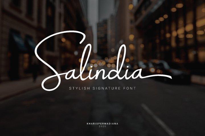 Salindia - Script Handwritten Font