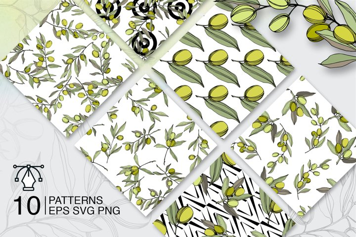 Olives vector EPS watercolor set   example 4