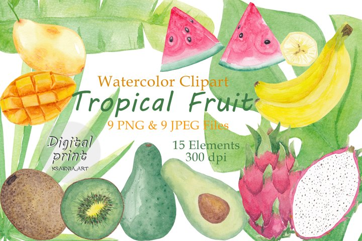 Set of 15 Elements Watercolor Tropical Clip Art Leaves, Frui